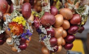 Bern-Onion-Market-02