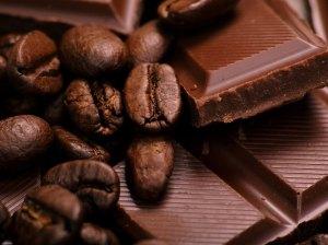 cafe-chocolate-fest-a